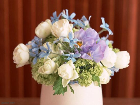 beautiful-flowers-18 - سال 1392 همایون  - متا