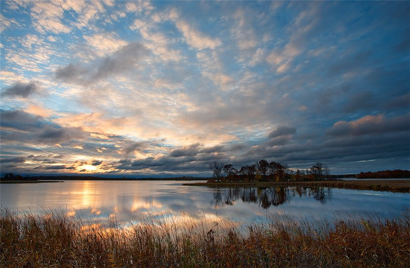 http://img.alamto.com/2011/nature/nature_06.jpg